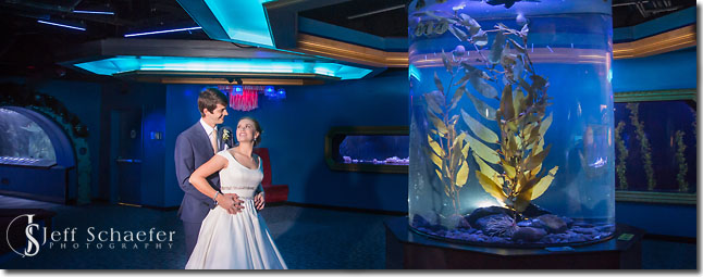 Newport Aquarium Wedding